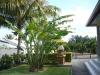 Lacaseafoule, un Gîte de la Réunion : Vue du jardin